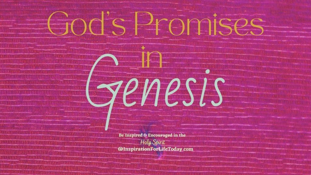 God's Promises in Genesis